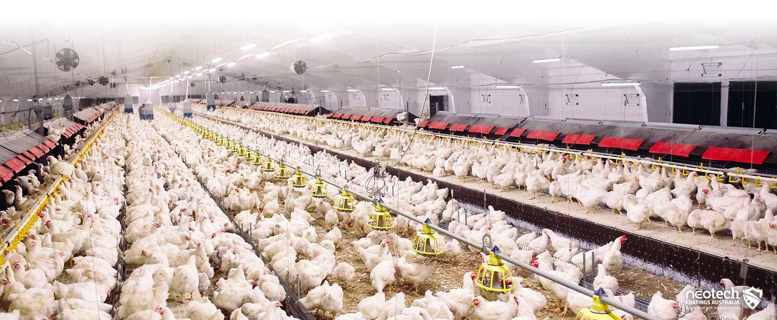 Poultry and Agriculture Heat Block Coatings NEOtech Coatings