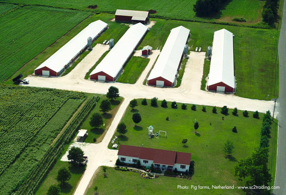 Pig Farms with Super Therm® Netherlands